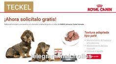 Muestra de comida para perros GRATIS - http://ift.tt/28OH414