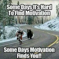 All We need to succeed in our life is Motivation. So, We are back with a massive collection of Inspirational Memes. There is 91 Motivational memes on this list Funny Animal Pictures, Funny Animals, Funny Pics, Funny Sayings, Funny Stuff, Exam Quotes Funny, Funny Ideas, Funny Shit, Memes Humor