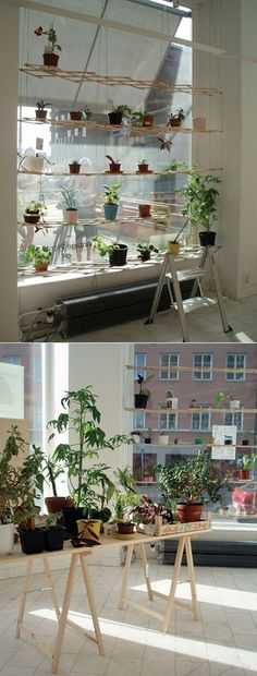 An awesome vintage plants shop in Stockholm!