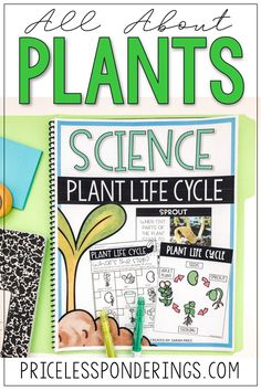 Your class will learn about plant life cycles with these fun hands on activities perfect for your life science class. Click the picture to learn more! Vocabulary Word Walls, Vocabulary Cards, Sorting Activities, Hands On Activities, Plant Science, Life Science, Life Cycle Stages, Second Grade Science, Fun Worksheets