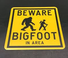 Image result for PROPERTY PROTECTED BY Bigfoot Warning Sign