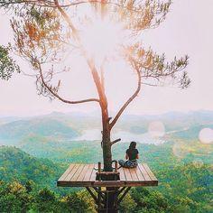 Ao esperar por coisas maiores não deixe escapar o que já tem. provérbio indonésio Foto: entardecer no parque nacional de Kalibiru na Indonésia por @agunghab