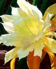 pinturas-hiperrealistas-flores-bonitas