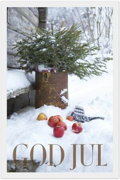 God Jul everyone! Via Cassie Anderson, via Faded Charm.