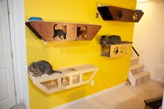 Hand Crafted Cat Shelving or Cat Wall #woodworking #pet #toy