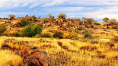 Reise nach Namibia - Genießen Sie 25 € bei Airbnb (Link im Profil) Namibia, Mountains, Link, Nature, Travel, Outdoor, Profile, Outdoors, Naturaleza