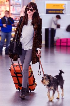 Dakota Johnson and her dog Zeppelin have arrived in NYC - 28 March 2015.
