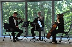 Musicians at recent wedding reception in the Glucksman Gallery. Wedding Reception, Musicians, Conference Room, Events, Gallery, Decor, Marriage Reception, Decoration, Roof Rack