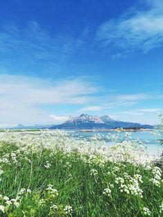 #PinpointTravel #Sommarsel #Tranøy #Hamarøy #Norway #mountain #ocean #summer #lighthouse #AdventureTravel #Travel #nature #holiday #arctic #TravelAgency #TravelDestinations #TravelItinerary #TravelGuides #Destinations Norway, Lights, Mountains, House, Travel, Viajes, Home, Haus, Traveling