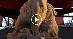 Talentosos Escultores Fazem Incrível Escultura De Areia De Elefante Em Tamanho Real a Jogar Xadrez