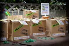 Creatively Quirky at Home: My nephew Luke's Reptile Party