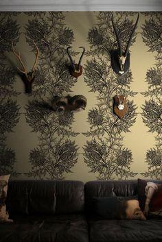 Thistle wallpaper ::