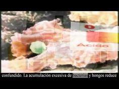 Alcalinización MILAGROSA: Bicarbonato de Sodio para el CÁNCER!!!