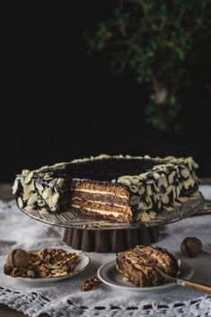 Easy Cake Recipes, Apple Recipes, Cookie Recipes, Torte Recepti, Kolaci I Torte, Big Cakes, Just Cakes, Torta Recipe, Torte Cake