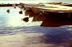 Holiday by Kumiko Lavender