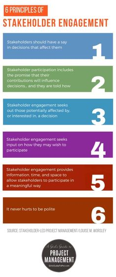 The 6 Principles of Stakeholder Engagement [Infographic] • Girl's Guide to Project Management Project Management Certification, Program Management, Resource Management, Change Management, Business Management, Stakeholder Management, Project Management Professional, Successful Business Tips, Business Education