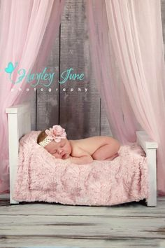 I love newborn sessions.  It's so fun to set up different settings for them.  Newborn photo, newborn girl, newborn baby girl photo, pink princess canopy, white newborn bed photo, Hayley June Photography, Calgary newborn photigrapher