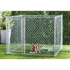 Archie & Oscar™ Abigail Steel Yard Kennel & Reviews | Wayfair Lucky Dog Kennel, Large Dogs, Small Dogs, Portable Dog Kennels, Waterproof Tarp, Gate Latch, Pet Resort, Roof Covering, Pet Cage