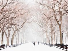 Check out this local's ultimate winter bucket list for New York City. All the fun and exciting things you need to see and do in NYC, right now.