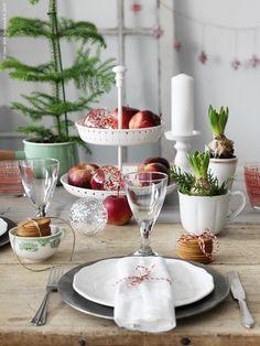 Hyacinter, gran och kalla röda vinteräpplen ger de klassiska färgerna och julkänsla till bordet. Dukat med ARV assiett, SVIT bestick i 24 delar, servetter av AINA metervara i linne, VINTERFINT skål, RÄTTVIK vitvinsglas, ERSÄTTA blockljushållare, KASTRULL kastrull med lock, TILLBAKA mugg, GARNERA uppläggningsfat i 2 våningar, VINTERMYS dekoration kula i glas.
