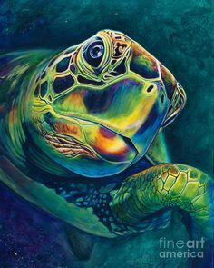 (It's more about forward progress than about speed) Tranquility Art Print by Scott Spillman. All prints are professionally printed, packaged, and shipped within 3 - 4 business days. Choose from multiple sizes and hundreds of frame and mat options. Sea Turtle Painting, Sea Turtle Art, Sea Turtles, Octopus Painting, Baby Turtles, Sea Life Art, Ocean Life, Ocean Art, Fish Art
