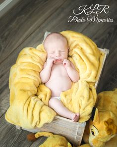 Lifestyle newborn Lion King  in home photography KLR Photo Memories