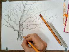 Fa rajz – mitől lesz igazán élethű és természetes? - Művészház Fa