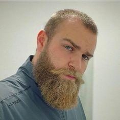Hairy Men, Bearded Men, Beard Barber, Hot Beards, All Hairstyles, Beard No Mustache, Hairy Chest, Sexy Men, Handsome