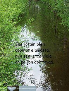 Mental Strength, Timeline Photos, Green Colors, Finland, My Love, Nature, Facebook, Beautiful, Art
