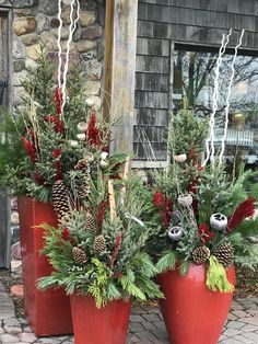 Gorgeous Winter Planters! Spruce tip pots Holiday planters