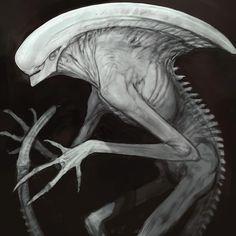 Enter the world of Alien: Covenant concept artist Rob Bliss! Alien Covenant Concept Art, Alien Concept Art, Alien Vs Predator, Xenomorph, Alien Photos, Giger Alien, Alien Life Forms, Giger Art, Non Plus Ultra