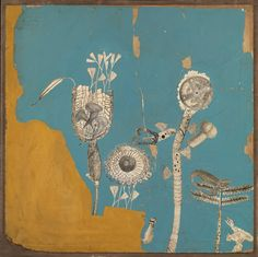 'Collage for 'Patio and Pavilion' (the growth of plant forms)', Nigel Henderson   Tate