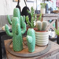 Morning  // #haarlem #atelier8 #shop #cactus #home
