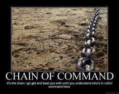 The chain of command, as defined by Jayne.