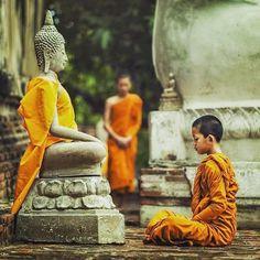 "2,559 Likes, 26 Comments - ☸Buddha's Teachings 5000 Years (@buddhateaching) on Instagram: ""ស្អែកនេះជាថ្ងៃឧបោសថសីល // Tomorrow is Uposatha Day, welcome New Moon 🌷🌑 01/ 20/ 2017 . Q: What…"""