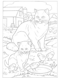World of Cats to Paint or Color Dover Publications