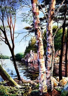 Muskoka Reflections by Hanne Lore Koehler, lake, reflections, nature, birch trees, peaceful