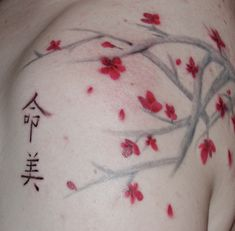 cherry blossoms in Japanese culture are associated with the ephemeral nature of life, while in chinese culture they are a symbol of female strength and power.