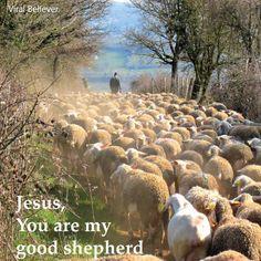 #Christian #Christianity #Jesus #Bible