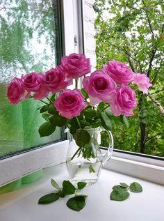 50 + beautiful flower vase arrangement for your home decoration - Page 38 of 51 - Blumen Bild Beautiful Rose Flowers, Beautiful Flower Arrangements, My Flower, Pink Flowers, Floral Arrangements, Beautiful Flowers, Fish Aquarium Decorations, Flowers In Jars, Rose Wallpaper