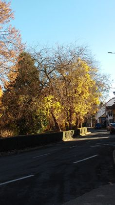 Sárvár várpark ősszel Writing Inspiration, Country Roads