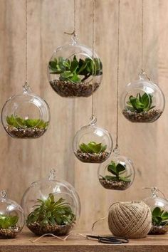 6pcs/set Hanging Air Plant Terrarium,Moss Succulent Planter/Wedding Candles,Glass Ball Tealight Holders - Wedding Candlestick or Home Decor