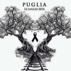 Assordante silenzio! #puglia #vittime #morte #silenzi #preghiera #dolore #assurdità #senzaparole #tragedia #destino #amaro #famigliedistrutte