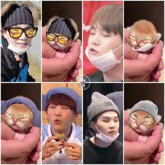 Two Yoongi, awww~! Bts Suga, Min Yoongi Bts, Bts Taehyung, Bts Bangtan Boy, Bts Funny Videos, Bts Memes Hilarious, Min Yoonji, Bts Meme Faces, Les Bts