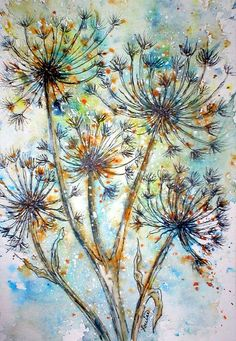 QUEEN ANNES LACE AGAIN  WATERCOLOR & INK  I love Queen Annes Lace....:)