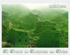 O Poder da Natureza