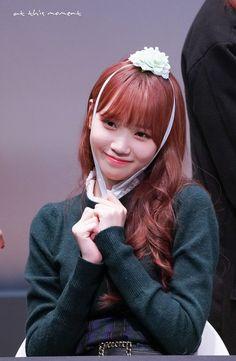181109 Sangam S-Flex fan signing Yu Jin, E Dawn, Japanese Girl Group, Woollim Entertainment, Kim Min, Nanami, The Wiz, Jinyoung, Korean Girl Groups