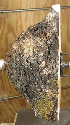 TIPS/WOOD RELATED - Burls and how to turn them into bowls with beautiful grain figuring and natural bark edges, details with images