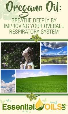 Breathe deeply by improving your overall respiratory system with oregano essential oil. Oregano essential oil acts as an expectorant, loosening up mucus and phlegm that congests the respiratory tract and causes excessive coughing.