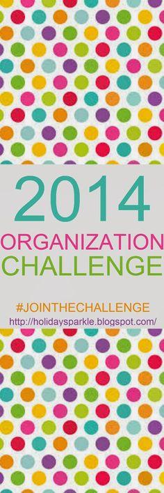 Holiday Sparkle: 2014 ORGANIZATION CHALLENGE